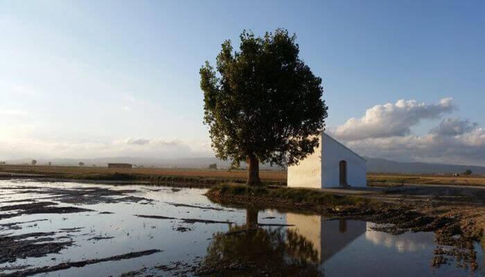 Delta de lEbre Nature Reserve