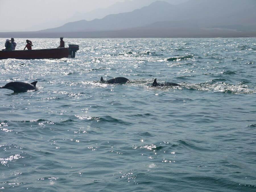 Shuab Bay